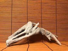 "Beautiful 10"" Driftwood Piece Terrarium Taxidermy Aquarium Art Reptile Decor"