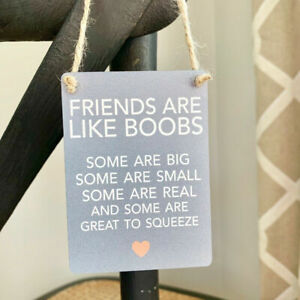 Friends are like Boobs fun hanging metal indoor sign plaque/gift