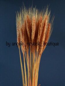 30 STEMS DRIED WHEAT/RYE FOR FLOWERS ARRANGING READY TO USE ORANGE BOUQUET