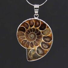 Natural Druzy Stone Ammonite Fossil Shell Gemstone Pendant Earrings Finger Rings
