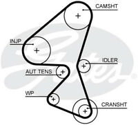 Gates Timing Cam Belt 5656XS  - BRAND NEW - GENUINE - 5 YEAR WARRANTY
