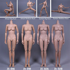 JXtoys 1/6 Scale Female Wheat Body Women Large Breast Action Figure JX-01A