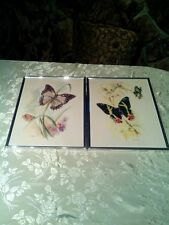 Vicente B. Ballestar Rare Double Butterfly And Single Butterfly Set Prints