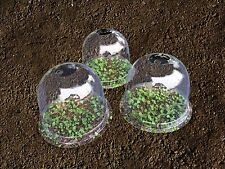 "5x Mrgarden Warm Worth Plastic Bell Cloche Protective Plant Cover 8""x6.5"""