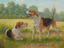 More details for pair of foxhounds original oil painting 16 x 12 by uk artist john silver ba