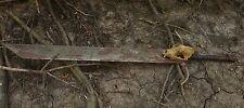"""GIANT 56"""" Heavy Sword Coyote Skull with Deer Antlers Functional Art 20lbs, Large"""
