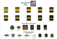 Large A3 Ranks of The Royal Navy Poster ( Military Rank Structure British