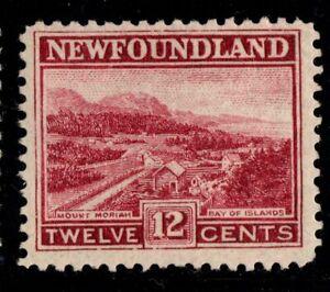 #141 Newfoundland Canada mint well centered