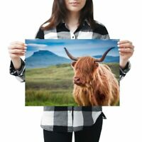 HIGHLAND COW BOX CANVAS PRINT LaRGe SiZeS OF Original Painting THE HaiRY BuNCH..