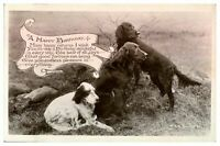 Antique RPPC real photograph postcard card A Happy Birthday Cute dogs