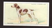 1937 Will's British Cigarettes Card--Pointer