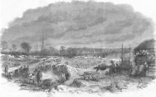 WARCS. Weavers levelling Witley Common, Coventry, antique print, 1861