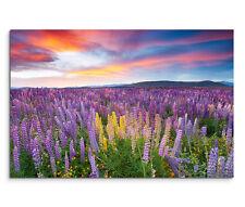 120x80cm Leinwandbild auf Keilrahmen Sonnenuntergang Blumenwiese Wolken