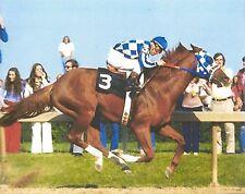 SECRETARIAT 8X10 PHOTO HORSE RACING PICTURE JOCKEY