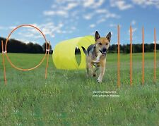 Dog Agility Exercise Set Obstacle Course Training Toys Weave Poie Jump Tunnel