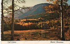 postcard   USA Utah Fall colours Beaver Mountain   unposted