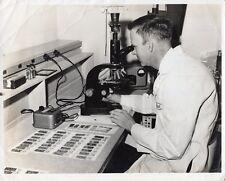 Original Press Photo Petrographer in lab Bituminous Coal Monroeville PA 27.7.64