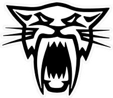 "#z1005 (1) 4"" Arctic Cat Head  Decal Sticker Team Racing Snowmobile LAMINATED"