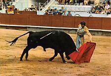 BR71818 corrida bull toros sport spain