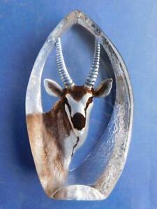 Engraved MATS JONASSON SWEDEN Glass Springbok Antelope 3864 Sweden