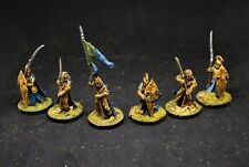 LOTR High Elves pro painted