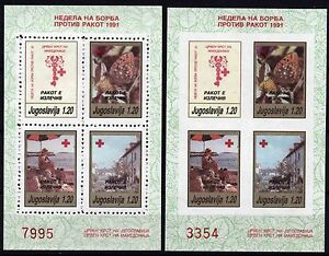 510 Yugoslavia - Macedonia 1991 Red Cross, Perf. + Imperf. Booklet (2) MNH