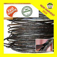 10 Fresh Madagascar Grade A Bourbon Whole Vanilla Beans-Pods 5