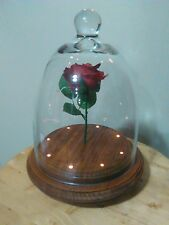 Beauty And The Beast Replica Forever Rose Prop