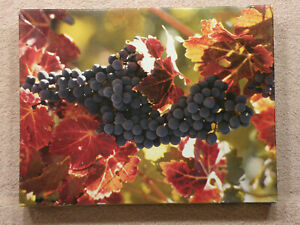 Springbok Puzzle On The Vine 500 Pieces, Jigsaw Colorful Fruit Grapes FREE SHIP!
