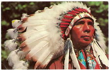 1950's Ornate Feather Bonnet Chief Native American Indian Devaney Color Photo Pc