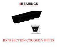 13x2235 Li AX88 cogged v ceinture