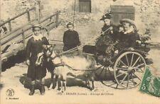 45 BRIARE CARTE POSTALE ATTELAGE DE CHEVRES 1909 ?