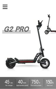 Kugoo G2 PRO 1000w Brushless Dual Motor Fast Electric Scooter E-scooter Off Road