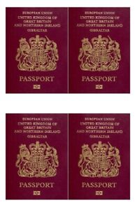 Passport Actual Size Cake Toppers printed on Icing Sheet set N2