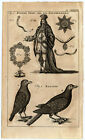 Antique Print-CROW-KNIGHTLY ORDER OF THE GARTER-Buys-1770