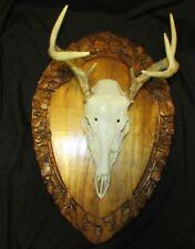 """3D Ornate Oak Taxidermy Head Mounting Plaque Acorns Oak Leaves 22"""" X 14 1/2"""""""