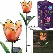 GIALLO Arancione Tulipano Fiore Solare Luce Giardino Paletto Creekwood Regal ART SCATOLA REGALO