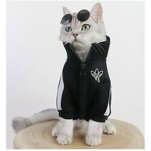 Fashion Cat Clothes Pet Cat Coats Jacket Hoodies For Cats Outfit Warm Pet Cloth