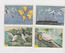 Part set (232 out of 300) Panini Birds 1976 in very nice condition.