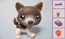 Littlest Pet Shop Dog Husky 174 and Free Accessory Authentic Lps