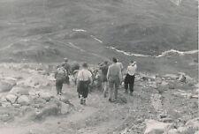 NORVÈGE c. 1940 - Descente des Sacs à  Dos Attelage Cheval Jotunheim - P 1710