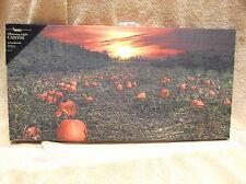 Pumpkin Patch Lighted Canvas Wall Decor Sign Fall Autumn Sunset Field Farm
