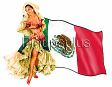Mexican Flag Vintage Pinup Waterslide Decal Tool boxes Guitars & much more S124
