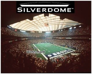 NFL Detroit Lions Pontiac Silverdome View from Stands Color 8 X 10 Photo Picture
