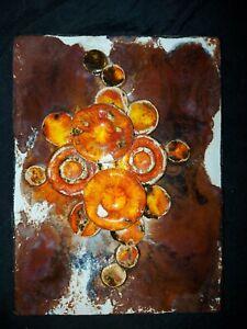 Ruscha Wandplatte Mushroom 60er 70er TOP Zustand