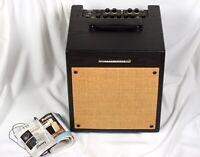 Ibanez Troubador T35 Guitar Vocal Acoustic Amp Chorus Reverb Aux/CD In PA/Out 10
