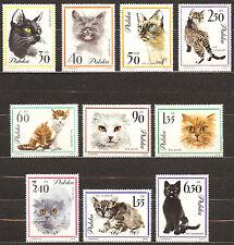 Poland 1964 Mi 1475-1484 Cats  / MNH