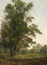 Nice Oil painting tree in summer landscape no framed