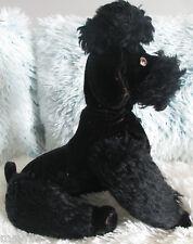 🌺 Steiff perro rey caniche Snobby 🌺 de 1950 🌺 con botón, sin bandera 🌺 35 cm 🌺