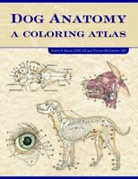 Dog Anatomy A Coloring Atlas by Robert A. Kainer 9781893441170 | Brand New